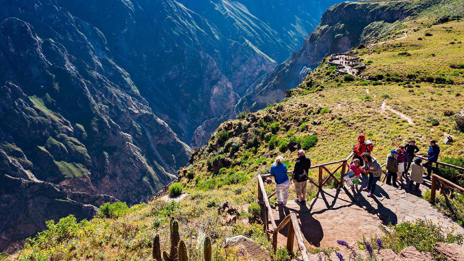 The Colca Canyon: Kingdom of the condor
