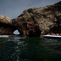 Ballestas Islands (Pisco)