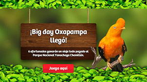 Big Day Oxapampa