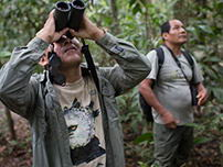 The birdwatchers team made use of binoculars for a better view.