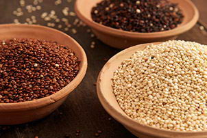 The Golden Grain - Quinoa
