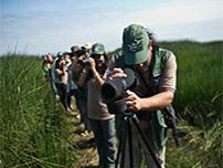 Big Day contestants using modern equipment for birding tourism.