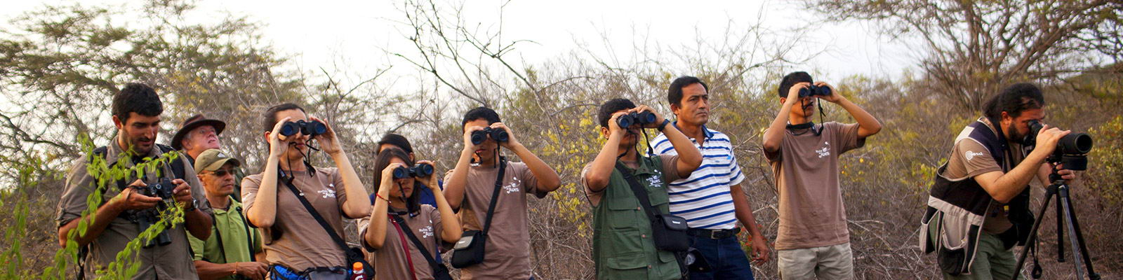 Chichiriches birding team Tambopata