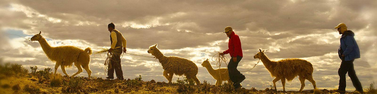 Guía de viaje: Cusco y Valle Sagrado